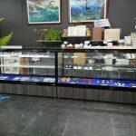 化石や鉱物〈購入可〉