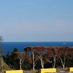 太平洋を望む眺望②